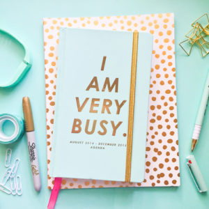 Why I am a rubbish blogger - Blue Diary which says I am very busy